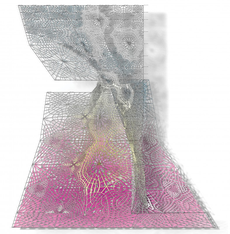 Technicolor_Bloom_unfurled_med